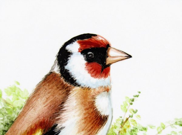 closeup picture of hand painted goldfinch